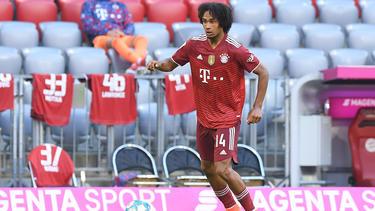 Joshua Zirkzee wird den FC Bayern offenbar verlassen