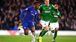 Callum Hudson-Odoi bleibt womöglich doch beim FC Chelsea