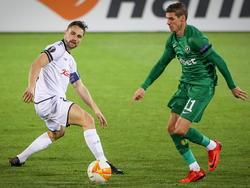 Holland gegen Ludogorets