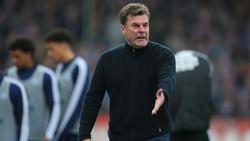 Vor dem Zweitligaspiel gegen Dresden fordert HSV-Coach Dieter Hecking sein Team heraus