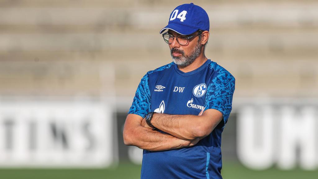 David Wagner steht beim FC Schalke schon vor dem Ligastart mächtig unter Druck