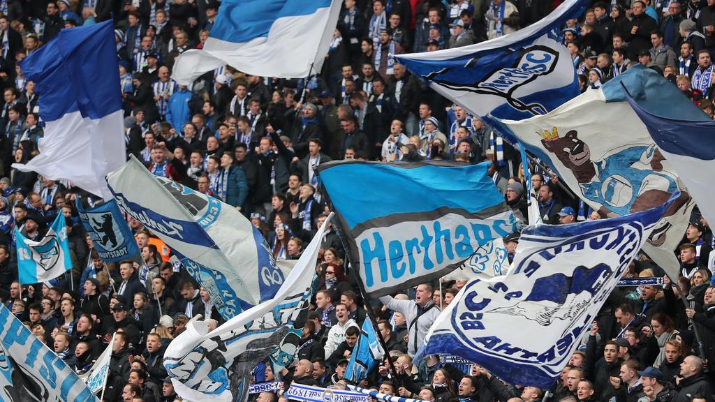 Die Fans von Hertha BSC können sich über einen neuen Großinvestor freuen