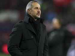 Adi Hütter soll bei der Hertha hoch im Kurs stehen