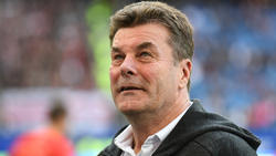 Dieter Hecking will mit dem HSV auch im DFB-Pokal erfolgreich sein