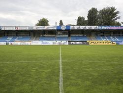 Der SC Wiener Neustadt wird in der kommenden Saison in der Regionalliga spielen