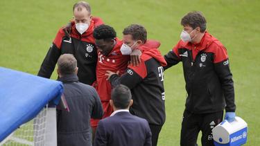 Alphonso Davies fehlt dem FC Bayern für sechs bis acht Wochen