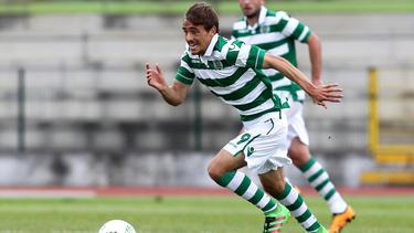 Chico Geraldes kommt von Sporting Lissabon