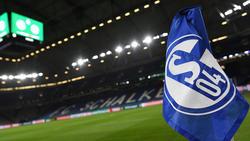 Der FC Schalke 04 hat sich offenbar die Dienste von Daniel Rose gesichert