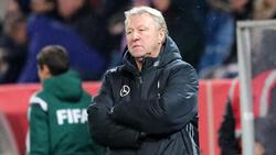 Horst Hrubesch such die Nummer zwei im DFB-Tor