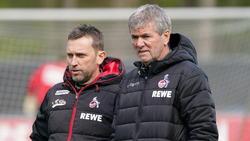 Friedhelm Funkel soll den 1. FC Köln retten