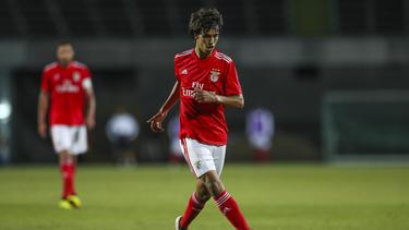 Joao Félix ist angeblich im Fokus des FC Bayern