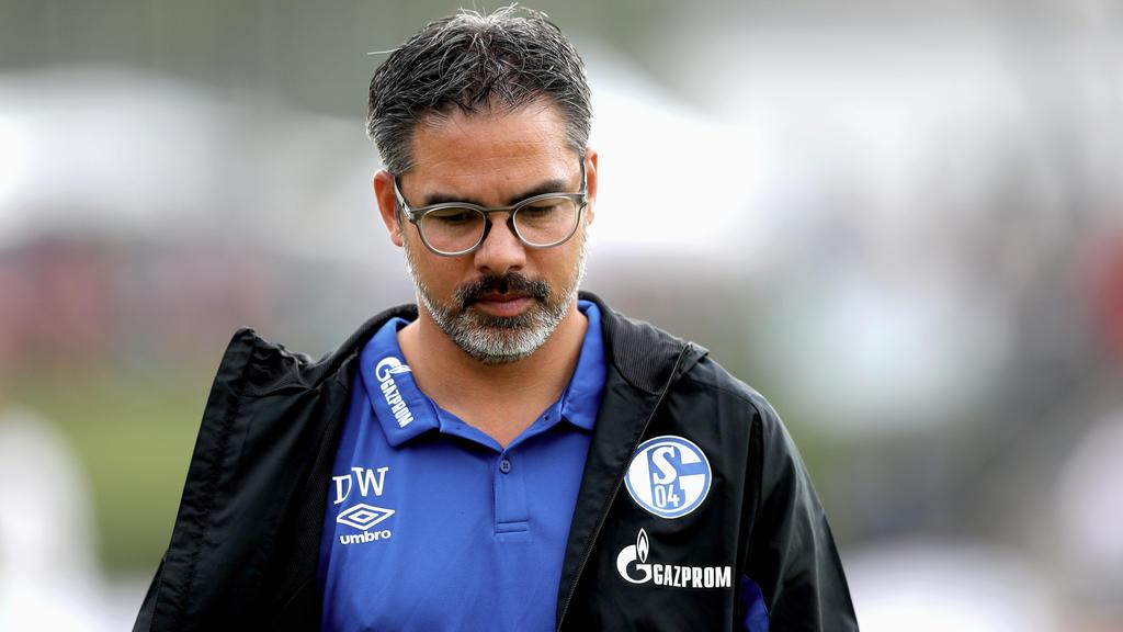 David Wagner hat beim FC Schalke eine Mammutaufgabe vor sich