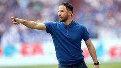 Domenico Tedesco kann sich beim FC Schalke 04 auf hochklassige Neuzugänge freuen