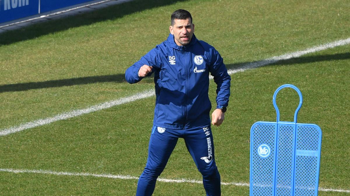 Grammozis will mit Schalke den Wiederaufstieg schaffen