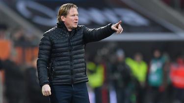 Markus Gisdol soll neuer Trainer beim 1. FC Köln werden