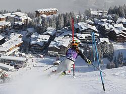 DSV Slalom-Ass