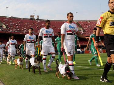 Los cariocas son, a priori, favoritos en la eliminatoria de la Libertadores. (Foto: Getty)