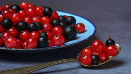 Johannisbeeren gibt es in vielen Farben. Doch vor allem schwarze Johannisbeeren sind gut dafür geeignet, den Muskelkater zu minimieren.