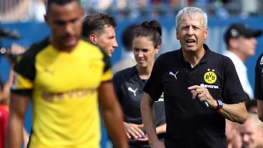Führt Lucien Favre den BVB zurück in die Erfolgsspur?