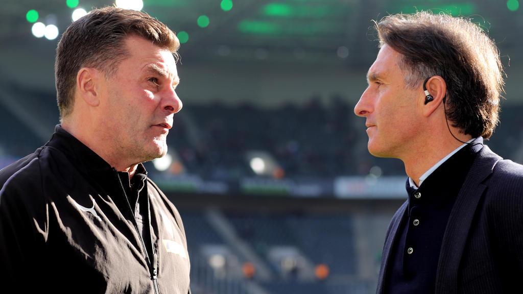 Der HSV klopfte angeblich bei Dieter Hecking und Bruno Labbadia an