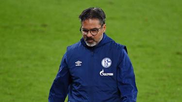 David Wagner wurde vom FC Schalke 04 mit sofortiger Wirkung beurlaubt