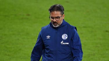 David Wagner war etwas mehr als ein Jahr lang Trainer des FC Schalke 04