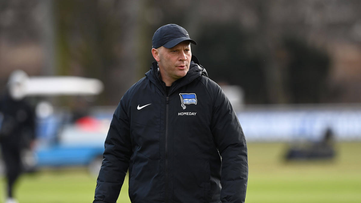 Pál Dárdai bereitet sein Team auf die neue Bundesliga-Saison vor