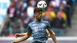 Bundesliga-Profis müssen sich einem Hirntest unterziehen