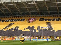 Dynamo Dresden setzt weiter auf Trio aus dem eigenen Nachwuchs