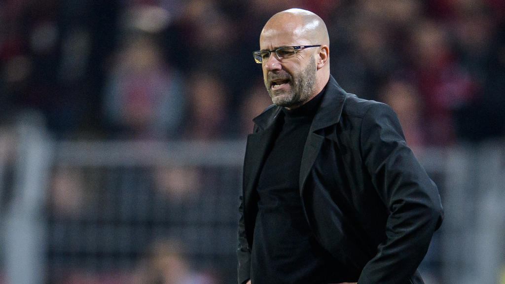 Im Spiel gegen den BVB steht auch Bayer-Coach Peter Bosz im Fokus