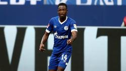 Abdul Rahman Baba ist noch bis 2019 an den FC Schalke 04 ausgeliehen