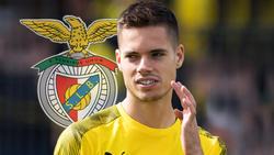 Julian Weigl hat den BVB in Richtung Lissabon verlassen