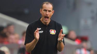 Heiko Herrlich und Bayer Leverkusen stehen unter Druck