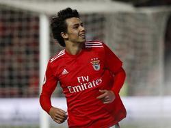 Joao Félix promete ser un jugador extraordinario.