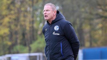 Torsten Fröhling ist U23-Coach beim FC Schalke 04
