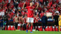 Julian Weigl ist mit Benfica gut aus den Startlöchern gekommen - nun wartet der FC Bayern