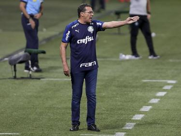 Luxemburgo no volverá a sentarse en el banquillo de Palmeiras.