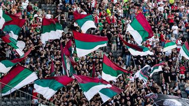 Der FC Augsburg feiert am kommenden Spieltag Geburtstag