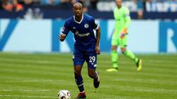 Naldo und der FC Schalke wollen in der Bundesliga eine Aufholjagd starten