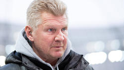 Stefan Effenberg kritisiert den BVB