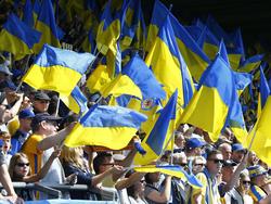 Braunschweigs Fans können sich auf Verstappen freuen