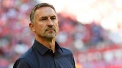 Setzt die Stars des 1. FC Köln nicht unter Druck: Coach Achim Beierlorzer