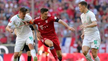 FC Bayern München ist Favorit im DFB-Pokal gegen Werder Bremen