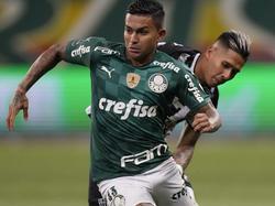 Palmeiras steht erneut im Copa-Finale