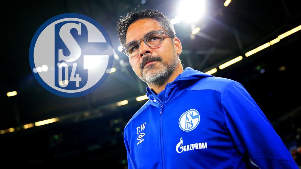 David Wagner ist seit dem Sommer Trainer des FC Schalke 04