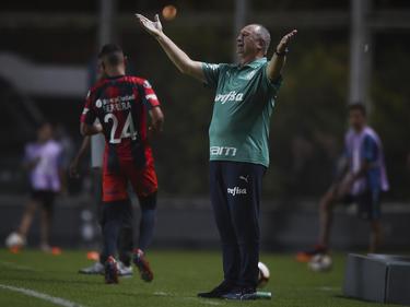 Luiz Felipe Scolari protesta una decisión en contra de Palmeiras. (Foto: Getty)