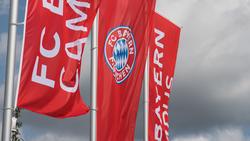 Nachschub für den Nachwuchs des FC Bayern ist im Anflug