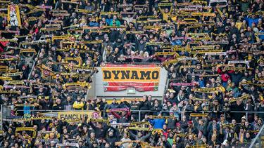 Die Fans von Dynamo Dresden bieten den HSV-Anhängern Schlafplätze an