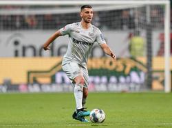 Aleksander Dragović hat es bei Bayer Leverkusen aktuell nicht leicht