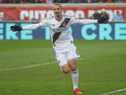 Zlatan Ibrahimovic jubelt in Los Angeles über seine Tore